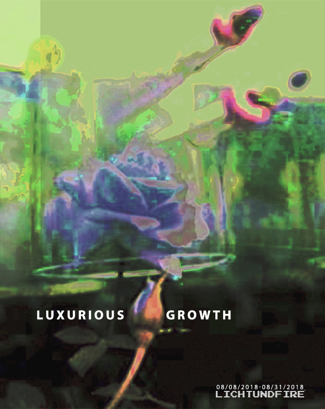 LUXURIOUS GROWTH August 2018 @ Lichtundfire